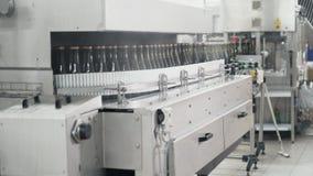 在工厂自动传送带洗涤的绿色瓶 香宾或葡萄酒酿造 影视素材