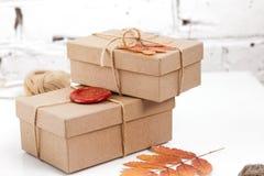 在工艺纸包裹的手工制造礼物和烘干在白色背景的叶子 图库摄影