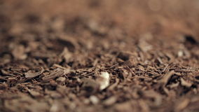在巧克力片的重新聚焦的宏观射击 影视素材