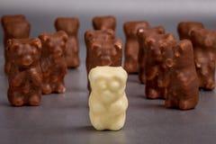 在巧克力的白熊 免版税库存图片