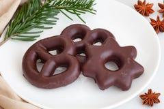 在巧克力的自创姜饼 免版税库存照片