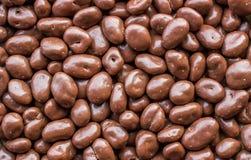 在巧克力盖的葡萄干。 免版税库存照片
