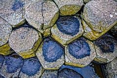 在巨人堤道的玄武岩专栏 免版税库存照片