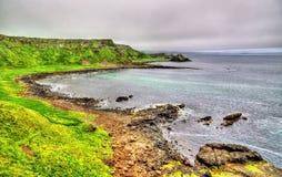 在巨人堤道附近的爱尔兰海岸线 免版税库存照片