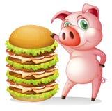 在巨型汉堡包旁边的一头肥胖猪 库存图片