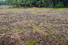 在巨型的洪水以后的干燥农场 免版税库存照片