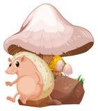 在巨型蘑菇附近的一molehog 免版税库存图片