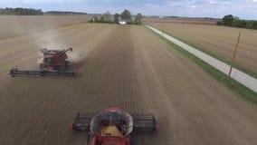 在巨大的有机麦子农田收获的惊人的空中寄生虫4k全景视图与大组合卡车机器车 股票录像