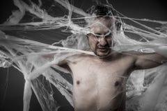 在巨大的白色蜘蛛网缠结的Network.man 库存照片