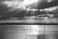 在巴伦西亚Albufera的观点的日落  库存图片