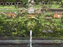 在巴厘岛寺庙的洗净喷泉由青苔,印度尼西亚侵略了 库存照片