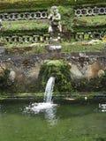 在巴厘岛寺庙的洗净喷泉由青苔,印度尼西亚侵略了 库存图片