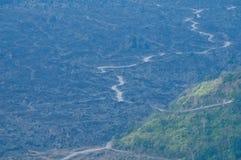 在巴厘岛阿贡火山火山附近的泥泞的深森林 免版税图库摄影