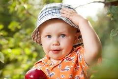 在巴拿马开玩笑用红色苹果 库存图片