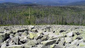 在巴法力亚森林的看法从Lusen山的顶端 免版税库存图片