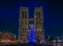 在巴黎圣母院的有启发性蓝色圣诞树在巴黎 库存照片