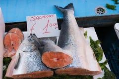 在市场上暴露的鱼 免版税库存照片