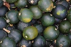 在市场上的南瓜 免版税库存图片