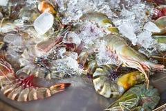 在市场上的新鲜的虾 免版税库存照片
