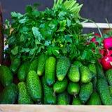 在市场上的柜台用黄瓜和绿色 免版税库存照片