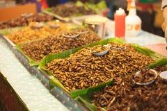 在市场上的油煎的幼虫 免版税库存图片