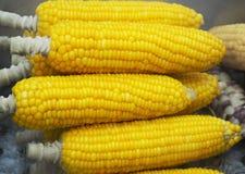 在市场上的煮沸的玉米棒子 免版税库存图片