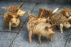 在市场上的猪 库存图片
