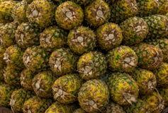 在市场上的菠萝 免版税库存图片