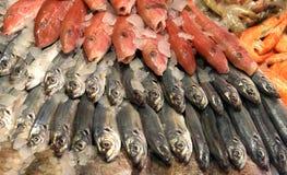 在市场上的鲜鱼在索非亚,保加利亚, 2月, 15日2017年 库存图片