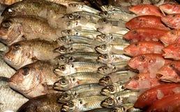在市场上的鲜鱼在索非亚,保加利亚, 2月, 15日2017年 库存照片