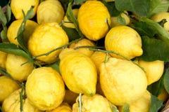 在市场上的索伦托柠檬 库存图片