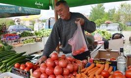 在市场上的水果和蔬菜卖主 库存照片