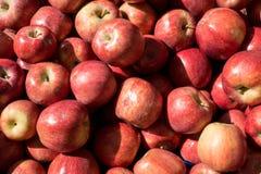 在市场摊位的成熟红色水多的苹果计算机堆 图库摄影