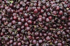 在市场显示的深红樱桃 库存图片