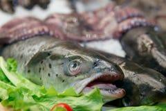 在市场显示的鳟鱼 图库摄影