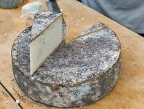 在市场柜台特写镜头的山羊乳干酪 免版税库存照片