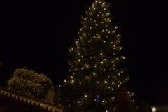 在市场的圣诞树 免版税库存图片