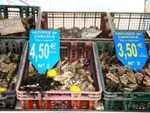 在市场立场的新鲜的牡蛎 免版税库存图片