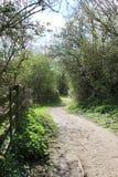 在布兰登沼泽的国家车道 库存图片