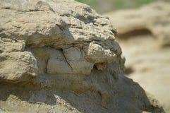 在布告上的岩石露出,蒙大拿 免版税库存图片