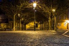 在布拉格城堡在晚上,布拉格, C下的美丽如画的Kampa海岛 免版税库存图片