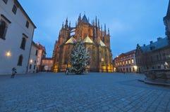 在布拉格城堡的新年树 库存图片