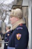 在布拉格城堡,捷克的卫兵 库存图片