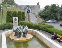 在布拉索夫,斯洛伐克浇灌小瀑布和菩提树花喷泉 免版税图库摄影