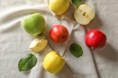 在布料的成熟水多的苹果 库存图片
