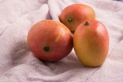 在布料的新鲜的芒果果子 库存图片