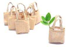 在布料袋子的树 免版税库存图片