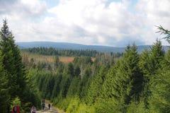 在布罗肯峰,哈茨山的Goetheweg风景 库存图片
