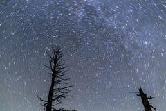 在布赖斯峡谷的星足迹 图库摄影
