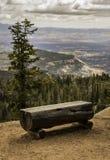 在布赖斯峡谷的自然树长凳 免版税库存图片